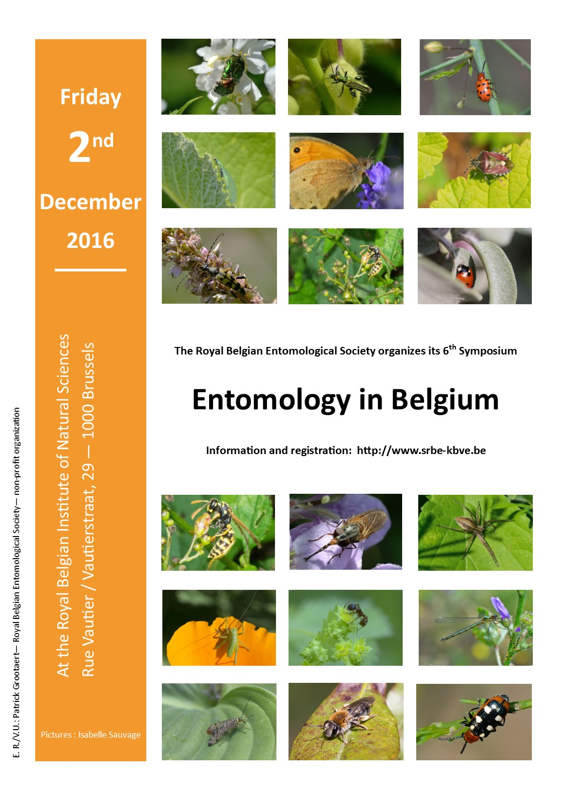 Entomology in Belgium 2016